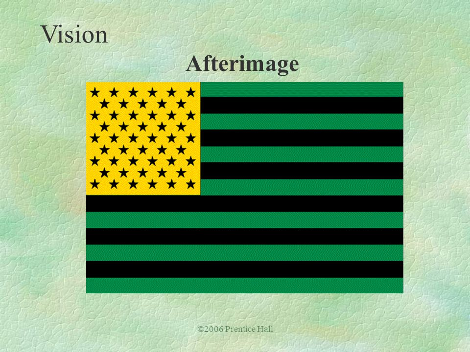©2006 Prentice Hall Vision Afterimage