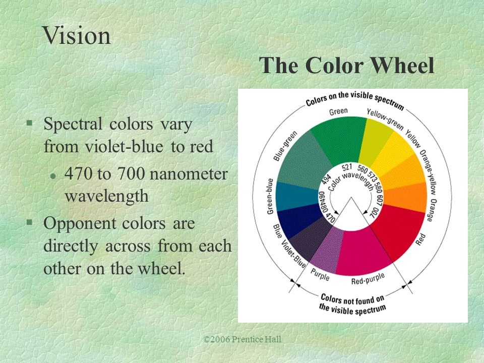 §Spectral colors vary from violet-blue to red l 470 to 700 nanometer wavelength §Opponent colors are directly across from each other on the wheel. Vis