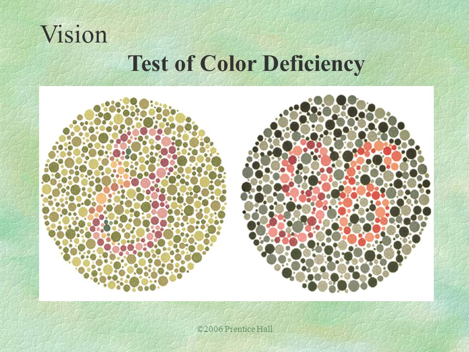 ©2006 Prentice Hall Vision Test of Color Deficiency