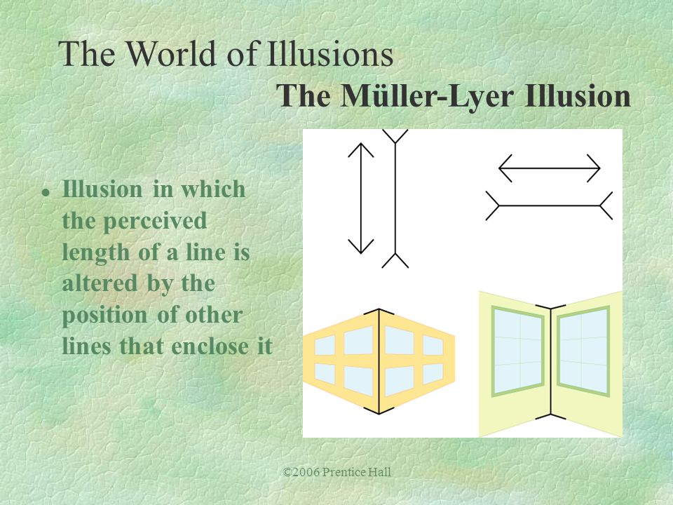 ©2006 Prentice Hall l Illusion in which the perceived length of a line is altered by the position of other lines that enclose it The World of Illusion