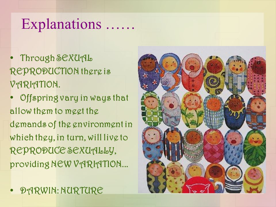 Explanations …… Through SEXUAL REPRODUCTION there is VARIATION.