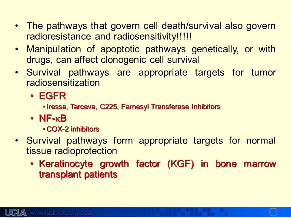 www.radbiol.ucla.edu Clinical Significance of Cell Death Intrinsic cellular radiosensitivity is determined in part by the balance of the signals trans