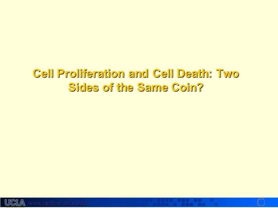 www.radbiol.ucla.edu Volume 354:567-578 February 9, 2006Volume 354:567-578 February 9, 2006 Radiotherapy plus Cetuximab for Squamous-Cell Carcinoma of