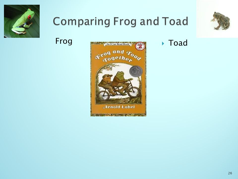 Frog  Toad 26