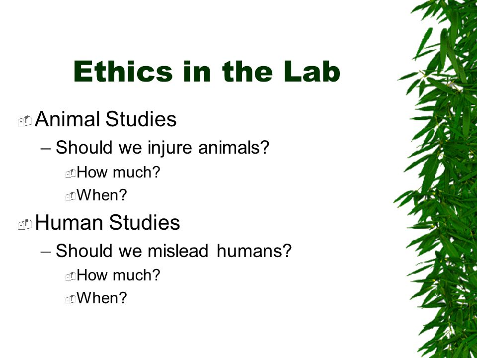 Ethics in the Lab  Animal Studies –Should we injure animals.