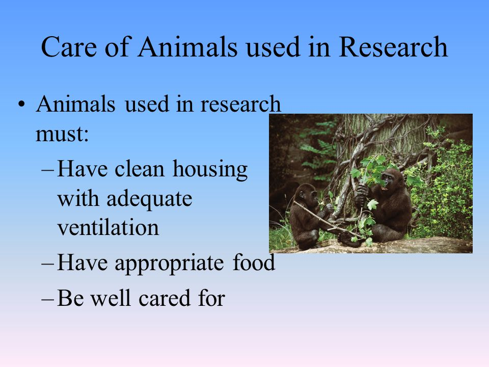 Care of Animals used in Research Animals used in research must: –Have clean housing with adequate ventilation –Have appropriate food –Be well cared for