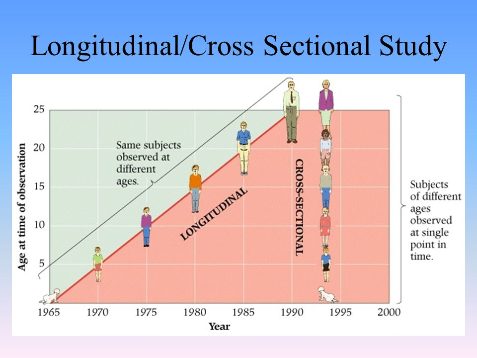 Longitudinal/Cross Sectional Study