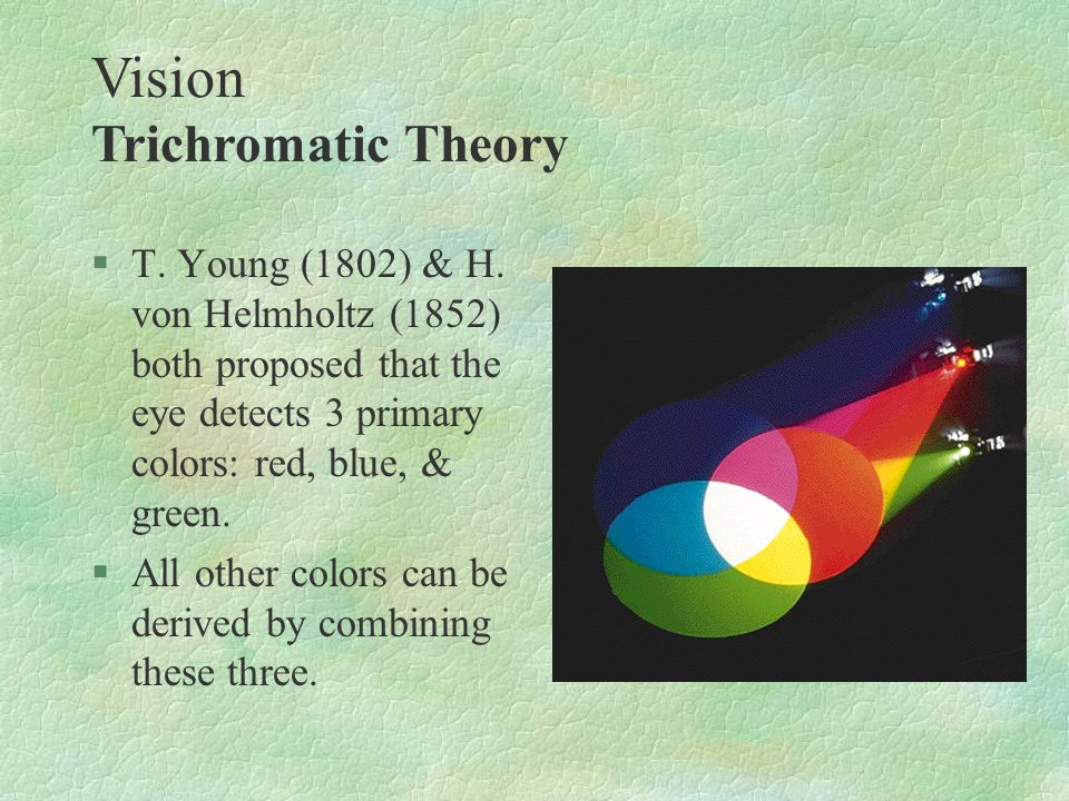§T. Young (1802) & H. von Helmholtz (1852) both proposed that the eye detects 3 primary colors: red, blue, & green. §All other colors can be derived b