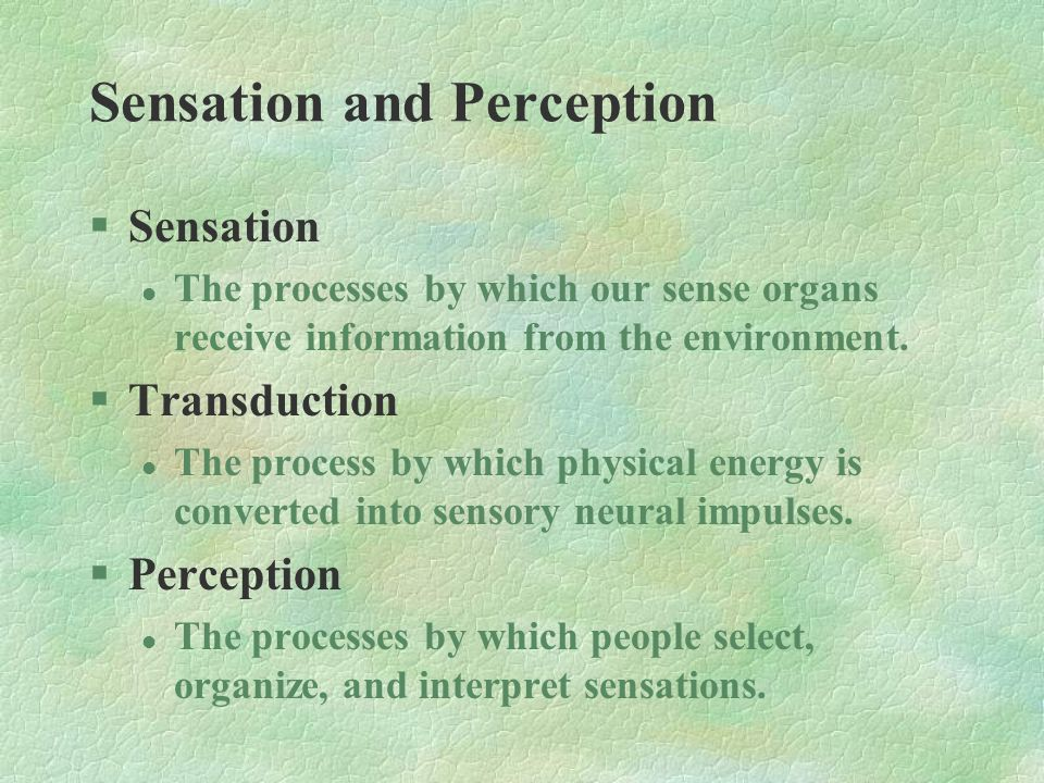 §Sensation l The processes by which our sense organs receive information from the environment. §Transduction l The process by which physical energy is