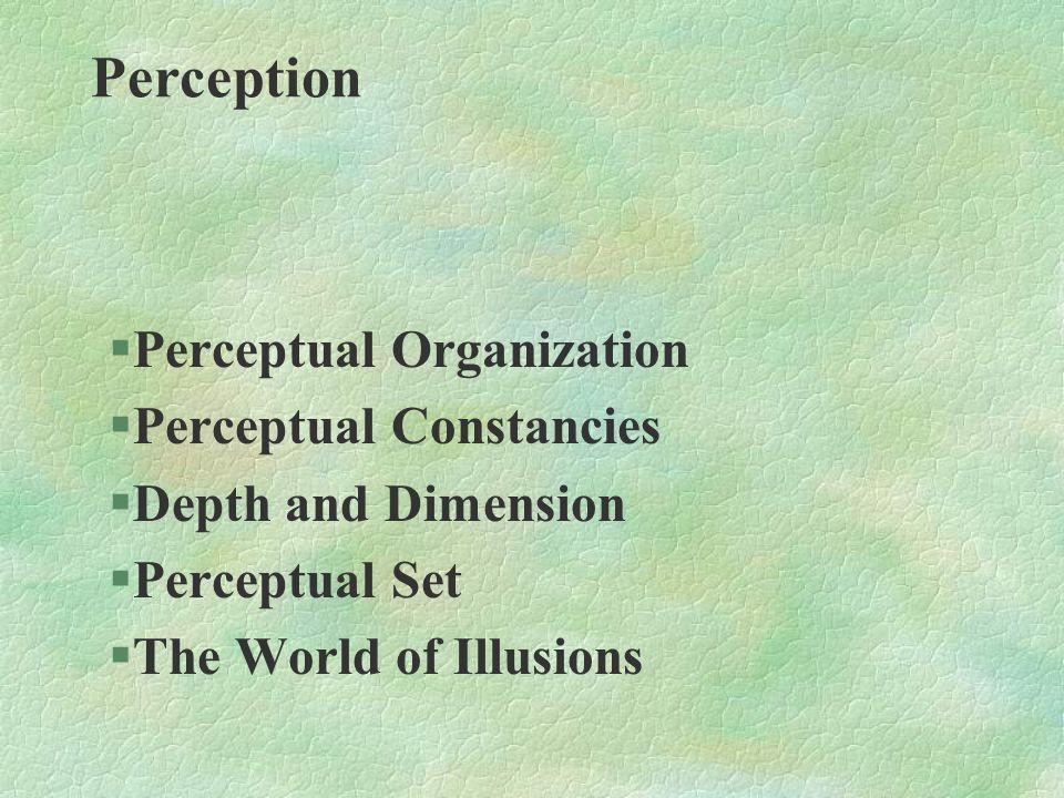 §Perceptual Organization §Perceptual Constancies §Depth and Dimension §Perceptual Set §The World of Illusions Perception
