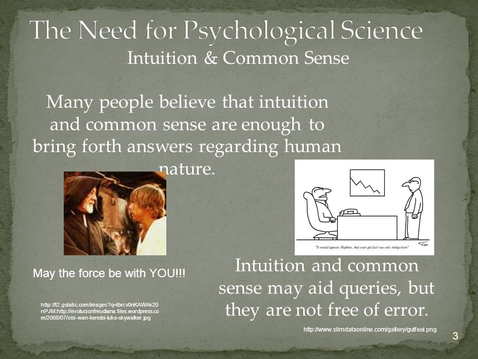 Intuition & Common Sense 3 Many people believe that intuition and common sense are enough to bring forth answers regarding human nature. Intuition and