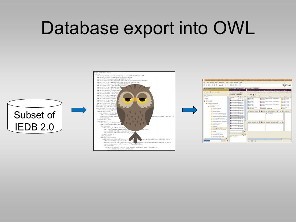 Subset of IEDB 2.0 Database export into OWL