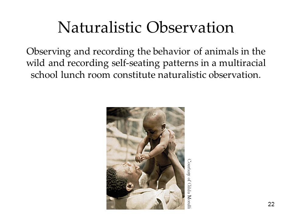 22 Naturalistic Observation Observing and recording the behavior of animals in the wild and recording self-seating patterns in a multiracial school lunch room constitute naturalistic observation.