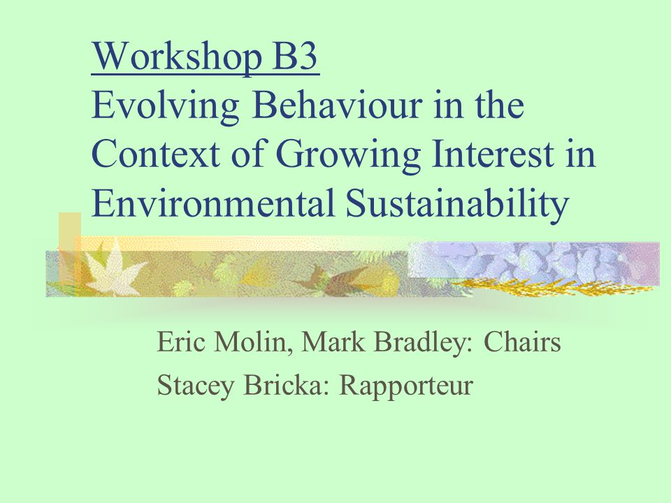 Workshop B3 Evolving Behaviour in the Context of Growing Interest in Environmental Sustainability Eric Molin, Mark Bradley: Chairs Stacey Bricka: Rapporteur