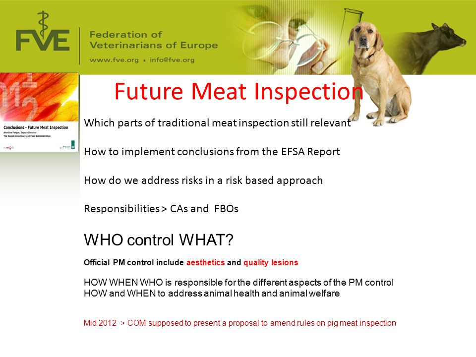 Future Meat Inspection Which parts of traditional meat inspection still relevant How to implement conclusions from the EFSA Report How do we address r