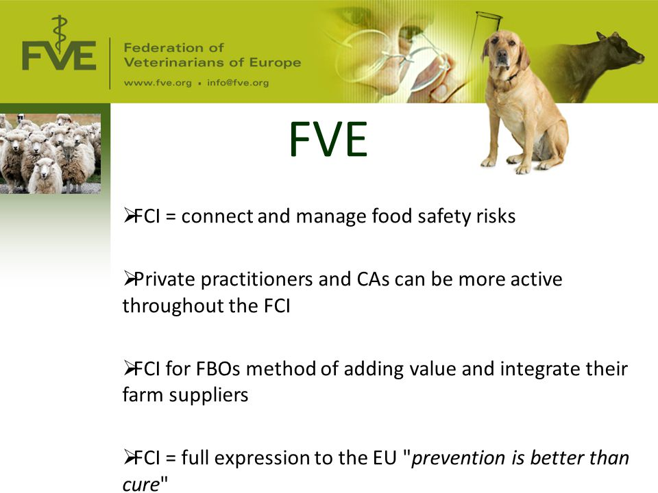 FVE  FCI = connect and manage food safety risks  Private practitioners and CAs can be more active throughout the FCI  FCI for FBOs method of adding