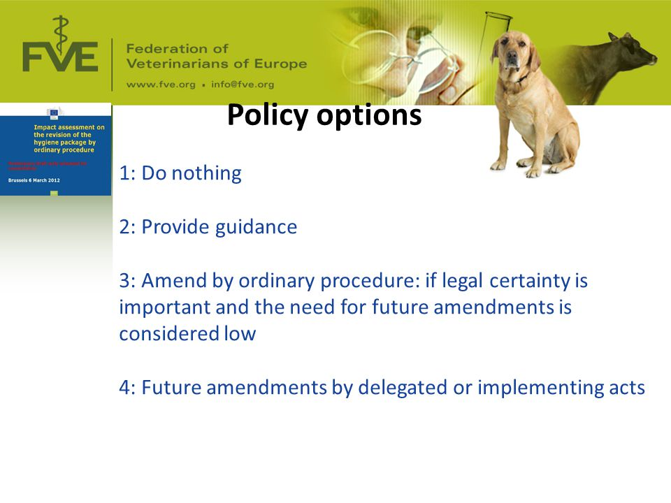 Policy options 1: Do nothing 2: Provide guidance 3: Amend by ordinary procedure: if legal certainty is important and the need for future amendments is