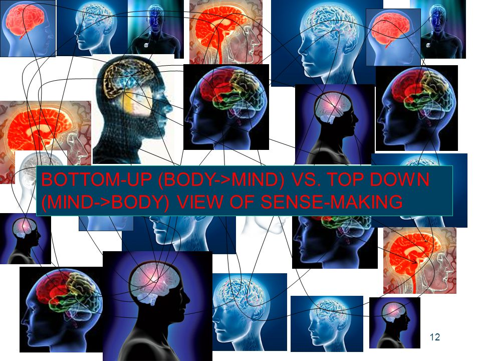 12 BOTTOM-UP (BODY->MIND) VS. TOP DOWN (MIND->BODY) VIEW OF SENSE-MAKING