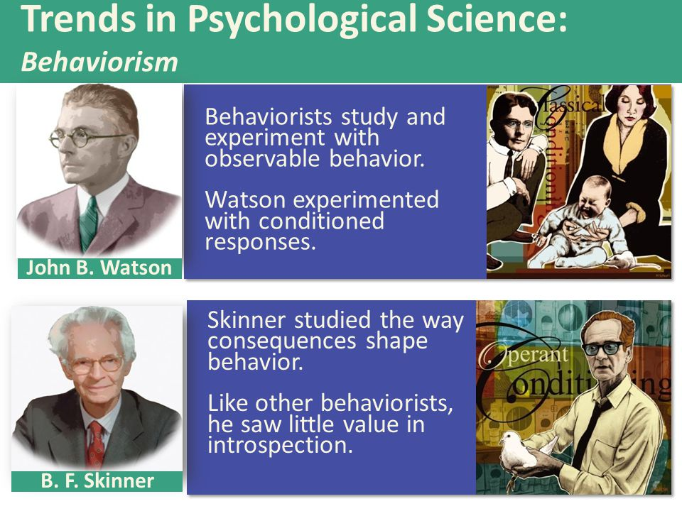Behaviorists study and experiment with observable behavior. Watson experimented with conditioned responses. Skinner studied the way consequences shape