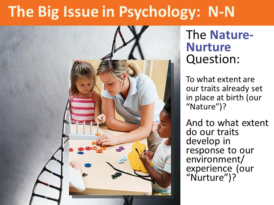 """The Big Issue in Psychology: N-N To what extent are our traits already set in place at birth (our """"Nature"""")? And to what extent do our traits develop"""