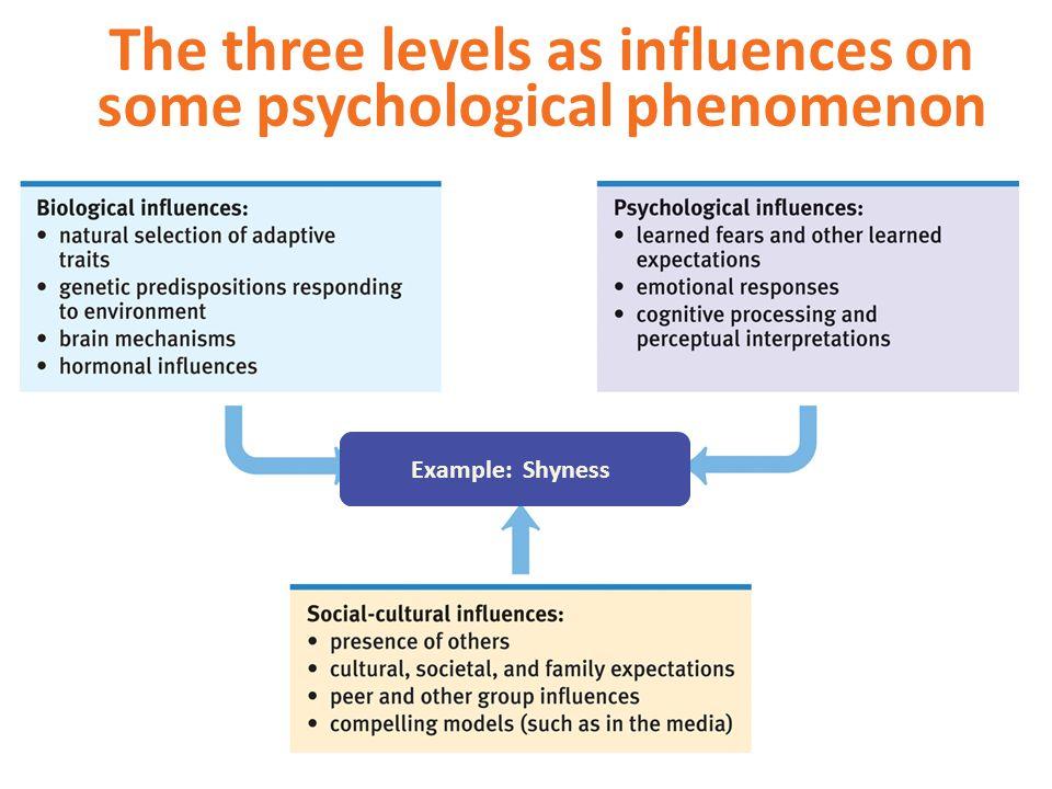 The three levels as influences on some psychological phenomenon Example: DepressionExample: IntelligenceExample: Enjoying Soccer Example: Shyness