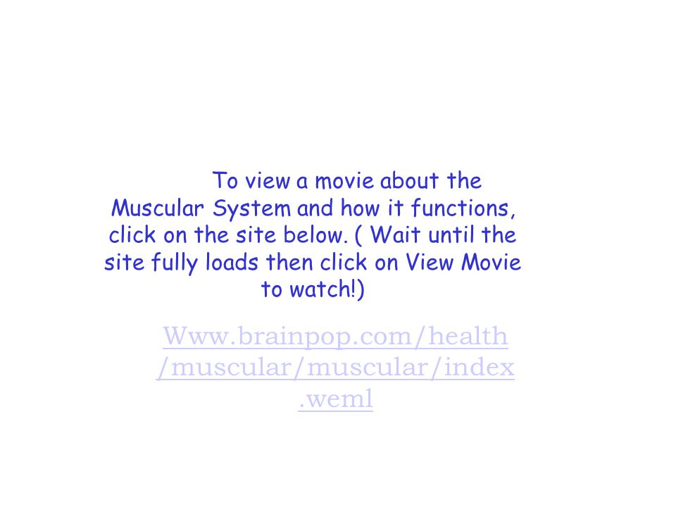 Www.brainpop.com/health /muscular/muscular/index.weml To view a movie about the Muscular System and how it functions, click on the site below.
