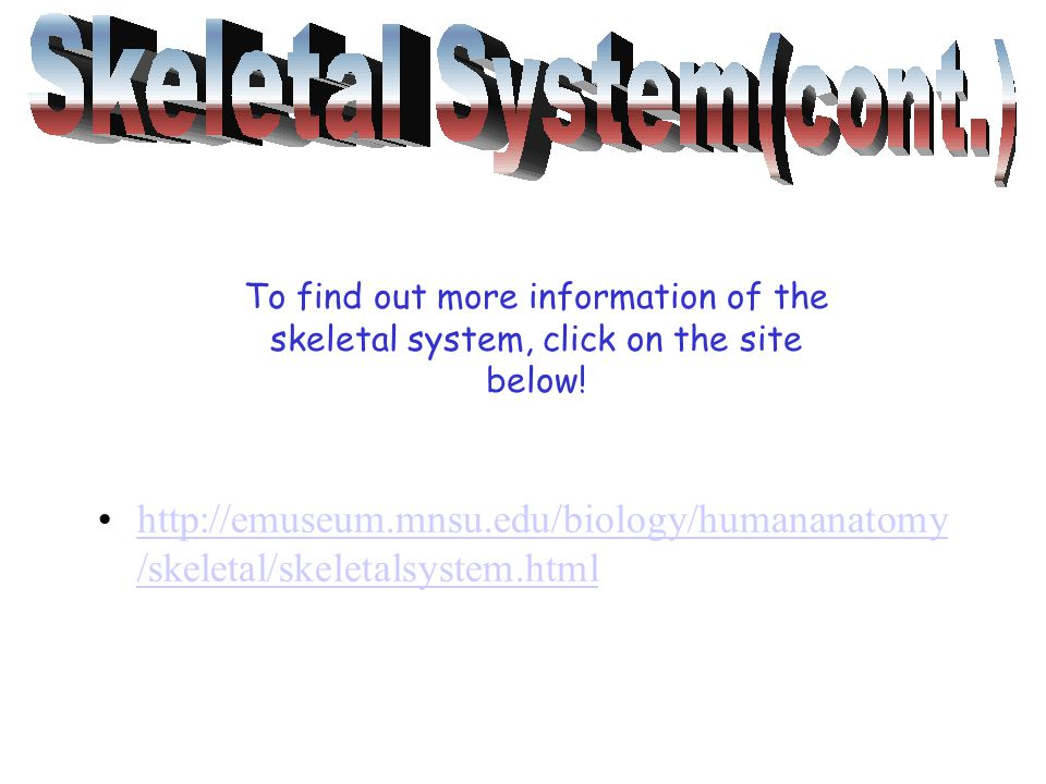 http://emuseum.mnsu.edu/biology/humananatomy /skeletal/skeletalsystem.htmlhttp://emuseum.mnsu.edu/biology/humananatomy /skeletal/skeletalsystem.html To find out more information of the skeletal system, click on the site below!