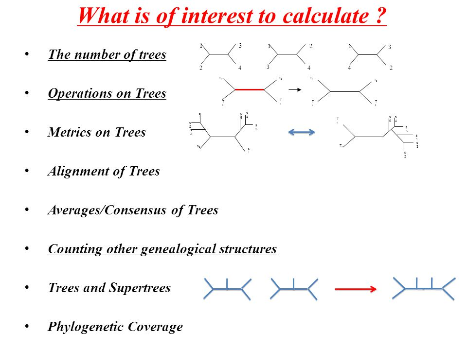 What is of interest to calculate .