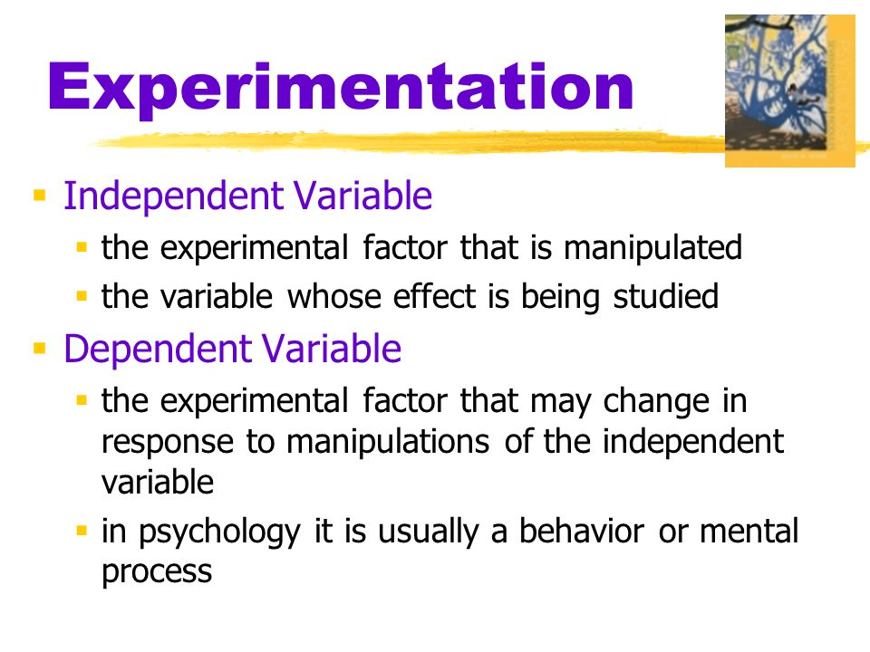 Experimentation  Independent Variable  the experimental factor that is manipulated  the variable whose effect is being studied  Dependent Variable
