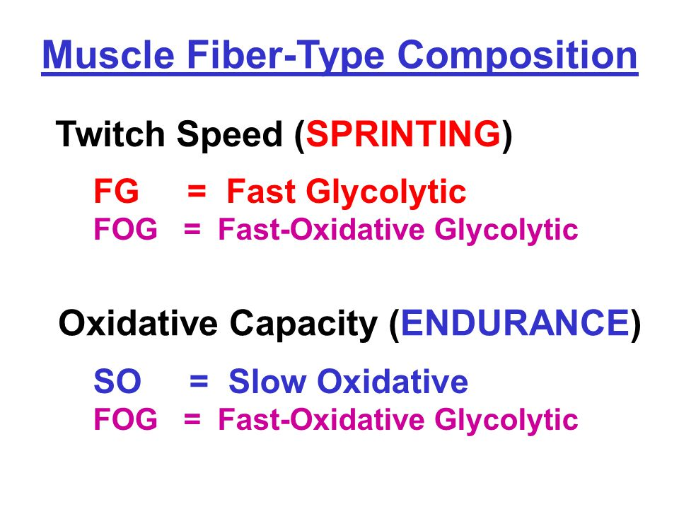 Twitch Speed (SPRINTING) SO = Slow Oxidative FOG = Fast-Oxidative Glycolytic Muscle Fiber-Type Composition FG = Fast Glycolytic FOG = Fast-Oxidative Glycolytic Oxidative Capacity (ENDURANCE)