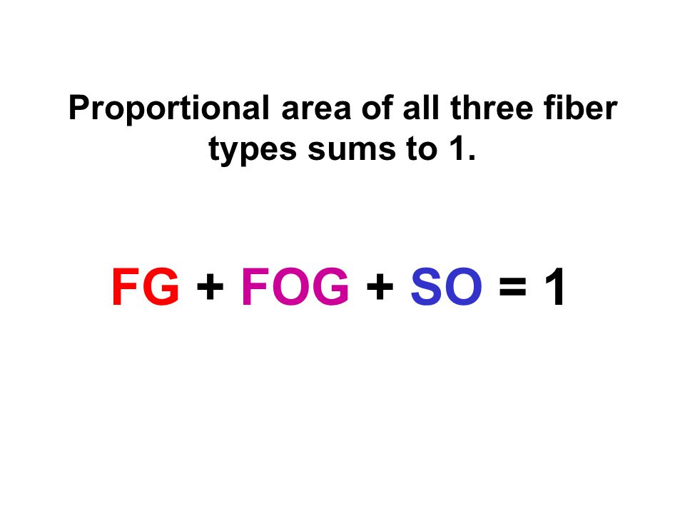 Proportional area of all three fiber types sums to 1. FG + FOG + SO = 1