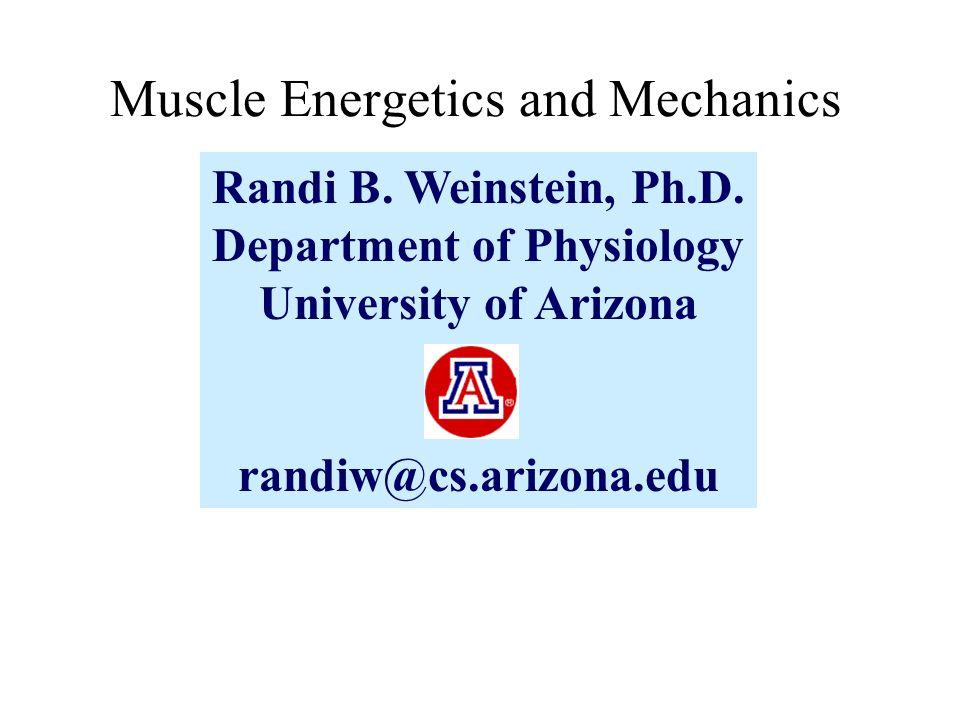 Randi B. Weinstein, Ph.D.