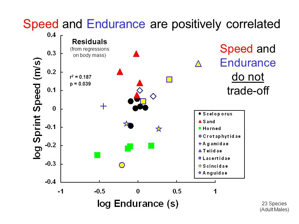 Speed and Endurance are positively correlated 23 Species (Adult Males) Residuals (from regressions on body mass) Speed and Endurance do not trade-off r 2 = 0.187 p = 0.039
