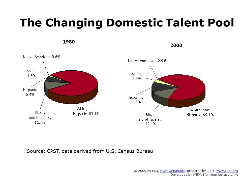 The Changing Domestic Talent Pool Source: CPST, data derived from U.S. Census Bureau © 2009 WEPAN, www.wepan.org, prepared by CPST, www.cpst.orgwww.we