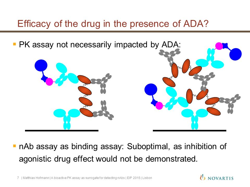 | Matthias Hofmann | A bioactive PK assay as surrogate for detecting nAbs | EIP 2015 | Lisbon8 Efficacy of the drug in the presence of ADA.