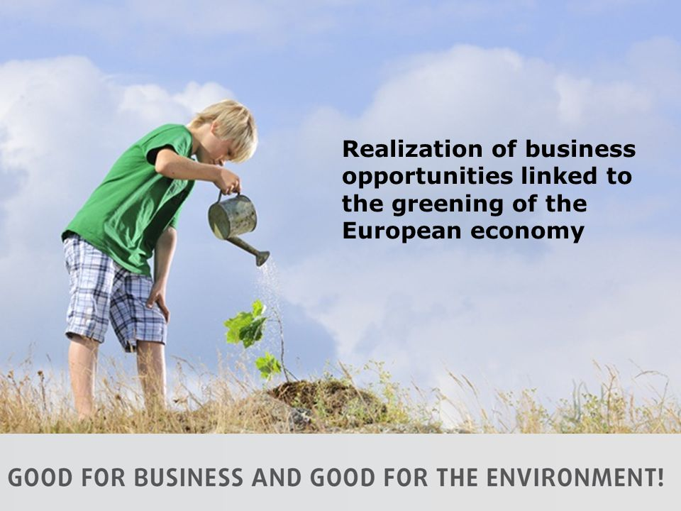 Realization of business opportunities linked to the greening of the European economy