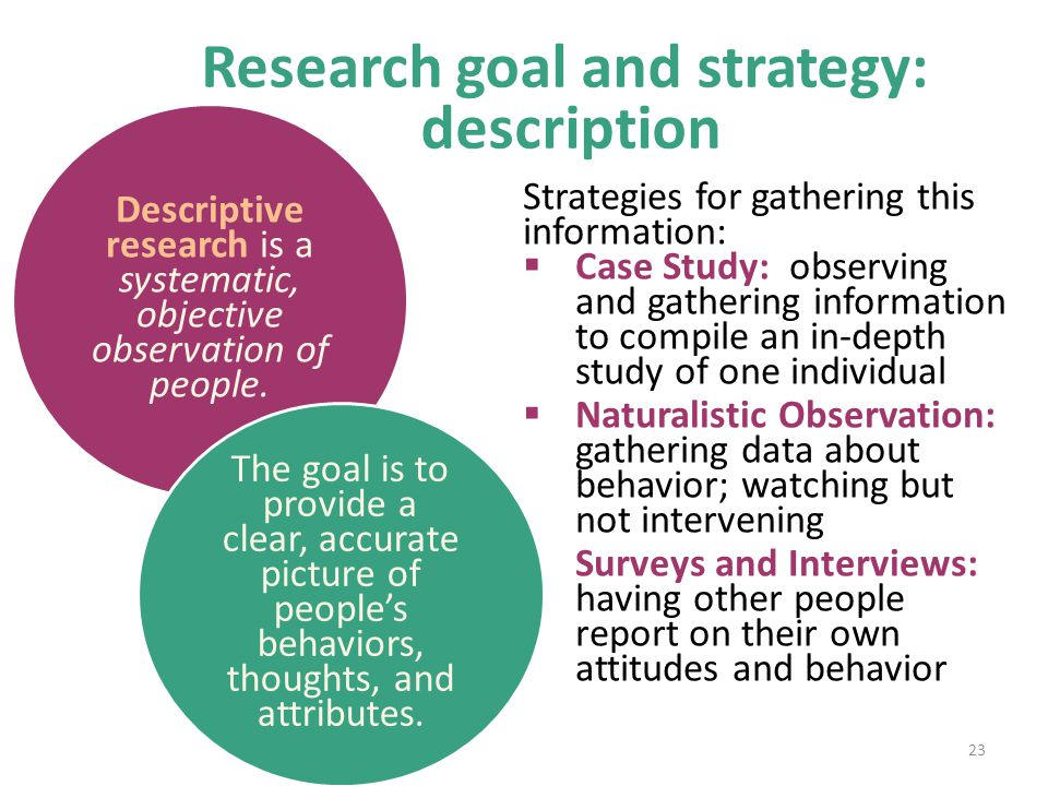 Research goal and strategy: description Strategies for gathering this information:  Case Study: observing and gathering information to compile an in-