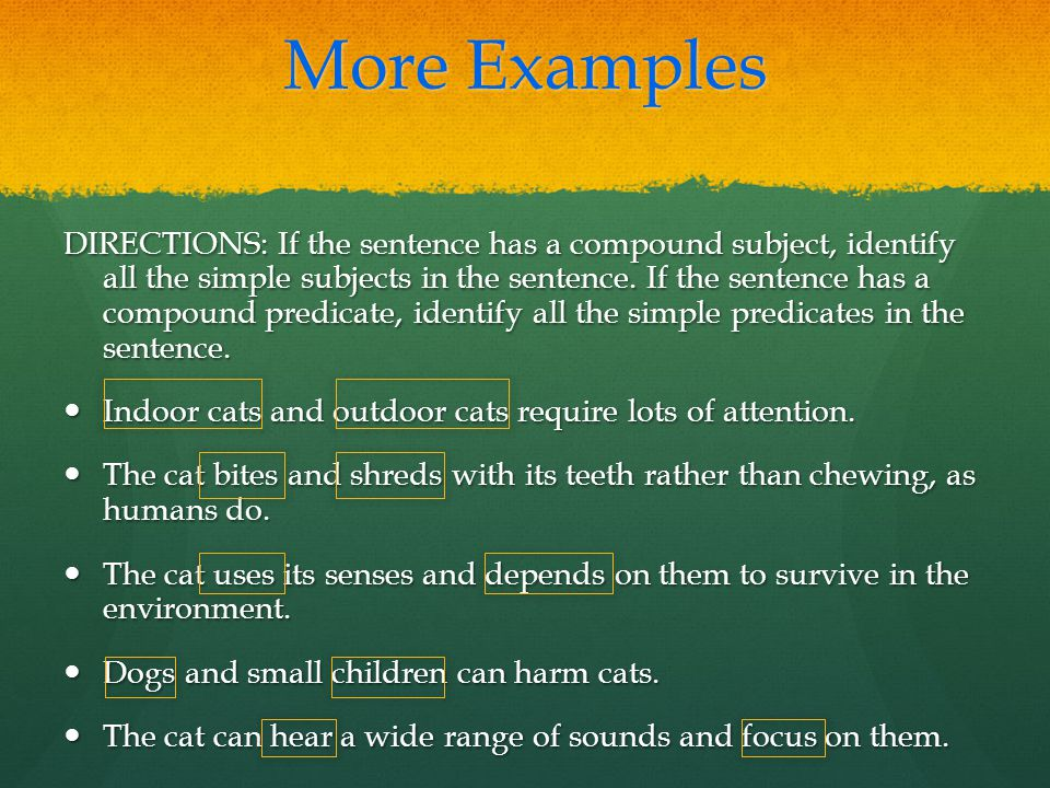 More Examples DIRECTIONS: If the sentence has a compound subject, identify all the simple subjects in the sentence.