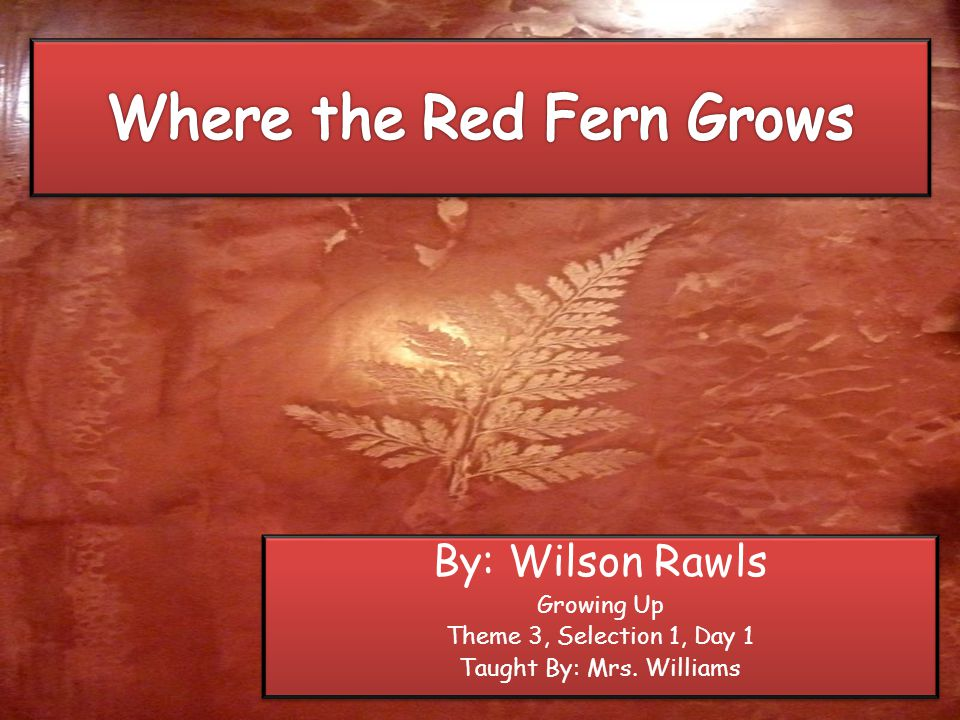 By: Wilson Rawls Growing Up Theme 3, Selection 1, Day 1 Taught By: Mrs.
