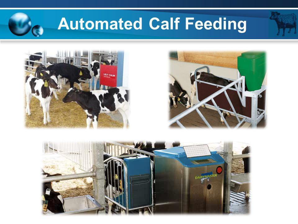 Automated Calf Feeding