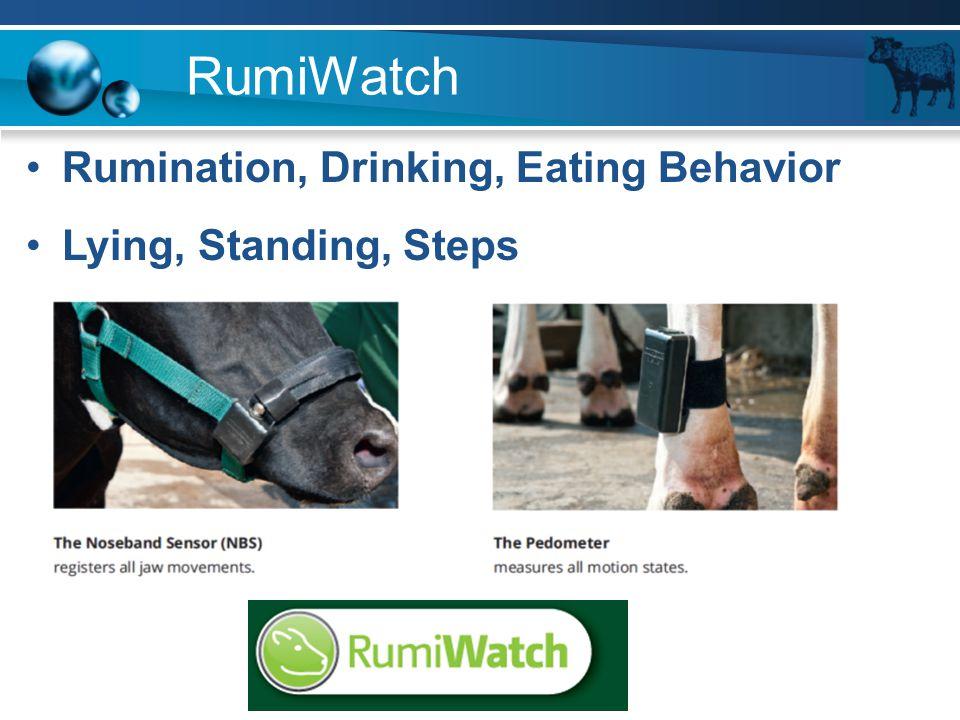 Rumination, Drinking, Eating Behavior Lying, Standing, Steps RumiWatch