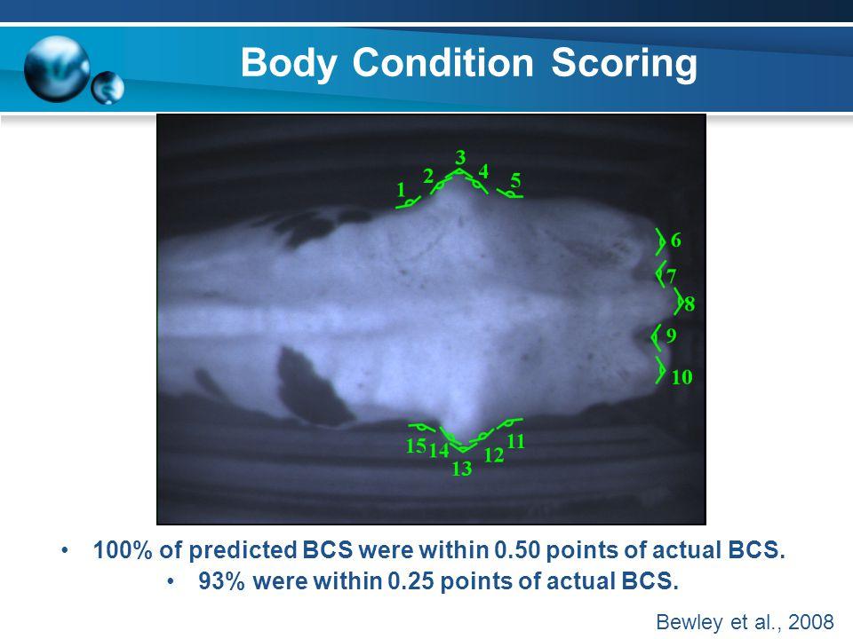 Body Condition Scoring 100% of predicted BCS were within 0.50 points of actual BCS. 93% were within 0.25 points of actual BCS. Bewley et al., 2008