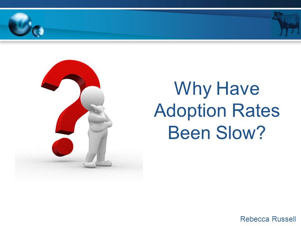 Why Have Adoption Rates Been Slow? Rebecca Russell
