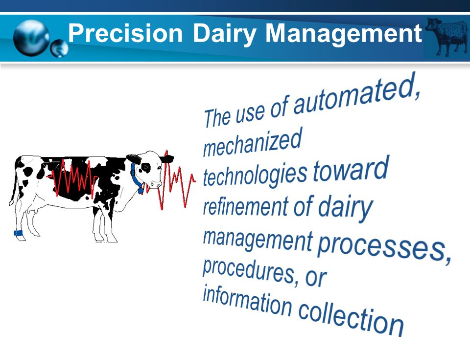 Precision Dairy Management