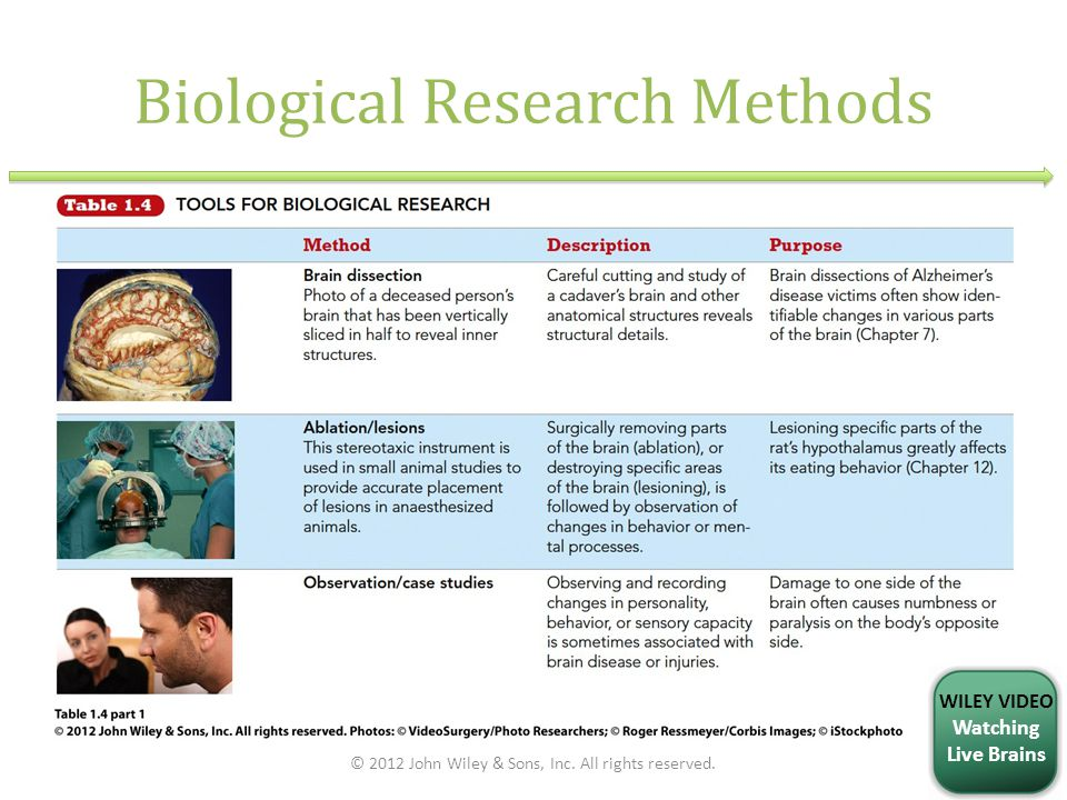 Biological Research Methods © 2012 John Wiley & Sons, Inc. All rights reserved. WILEY VIDEO Watching Live Brains