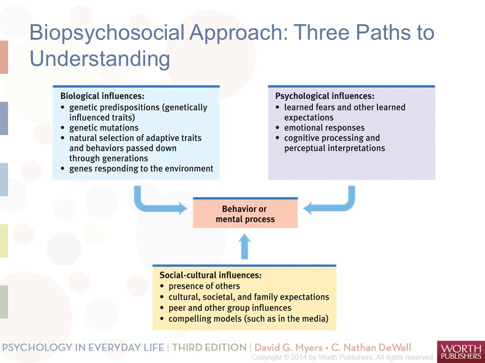 Biopsychosocial Approach: Three Paths to Understanding