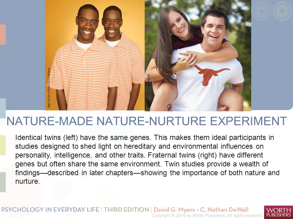 NATURE-MADE NATURE-NURTURE EXPERIMENT Identical twins (left) have the same genes. This makes them ideal participants in studies designed to shed light