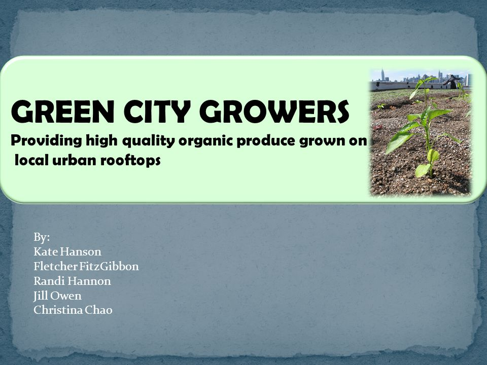 GREEN CITY GROWERS Providing high quality organic produce grown on local urban rooftops By: Kate Hanson Fletcher FitzGibbon Randi Hannon Jill Owen Christina Chao