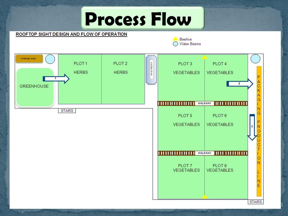 PwC Process Flow