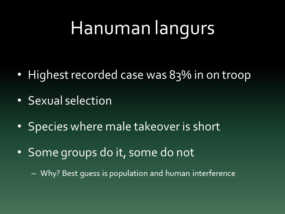 Hanuman langurs Highest recorded case was 83% in on troop Sexual selection Species where male takeover is short Some groups do it, some do not – Why.